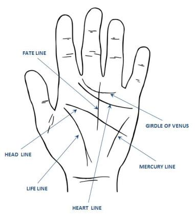 Palmistry Lines